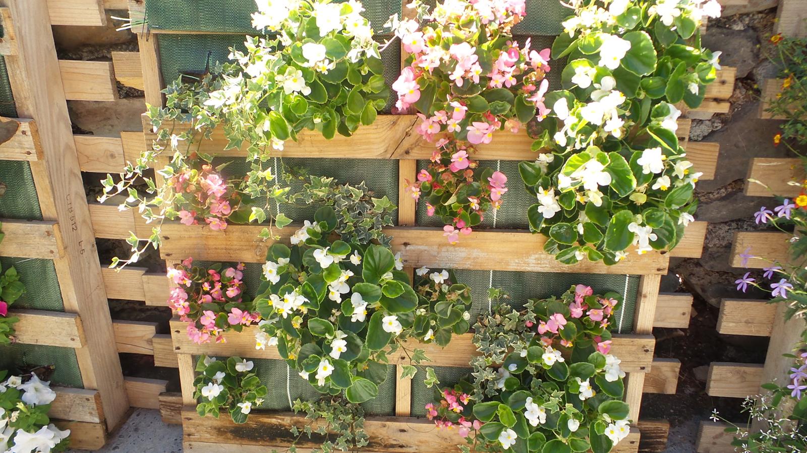 R aliser des palettes fleuries for Organiser son jardin potager